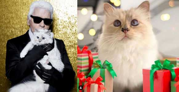 Late Iconic fashion designer Karl Lagerfeld left his '$200 million fortune' to his cat