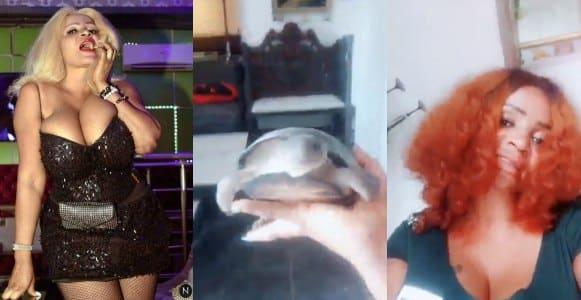 Actress Cossy Ojiakor plans to name her new pet 'Atiku' (Video)