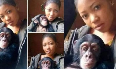 'I will rather date a monkey than a man,' - Lady says
