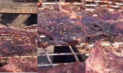 Lady shocked after seeing how Kilishi' is being made (Video)