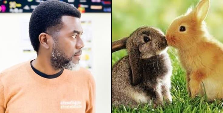 Nigerians produce more children than rabbits - Reno Omokri