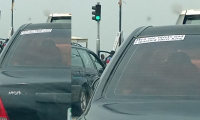 """""""Men are idiots and I married their king,"""" - Lady's car sticker, reads"""