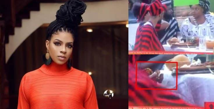 BBNaija 2019: Venita captured hiding food in her chest (video)