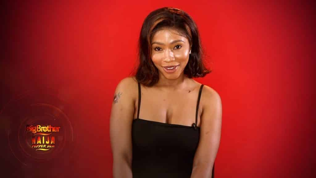 BBNaija 2019 What Mercy told Biggie about new housemates -1