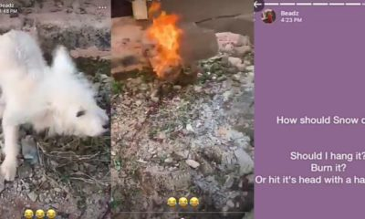 Heartbreaking moment Nigerian boy burnt his pet dog alive (photos)
