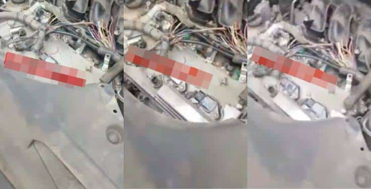 Man reveals what rats did to his Lexus SUV (Video)
