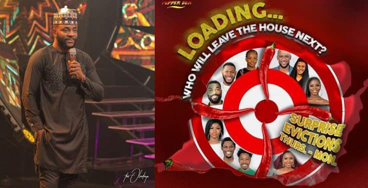 BBNaija 2019: Surprise eviction begins tonight!