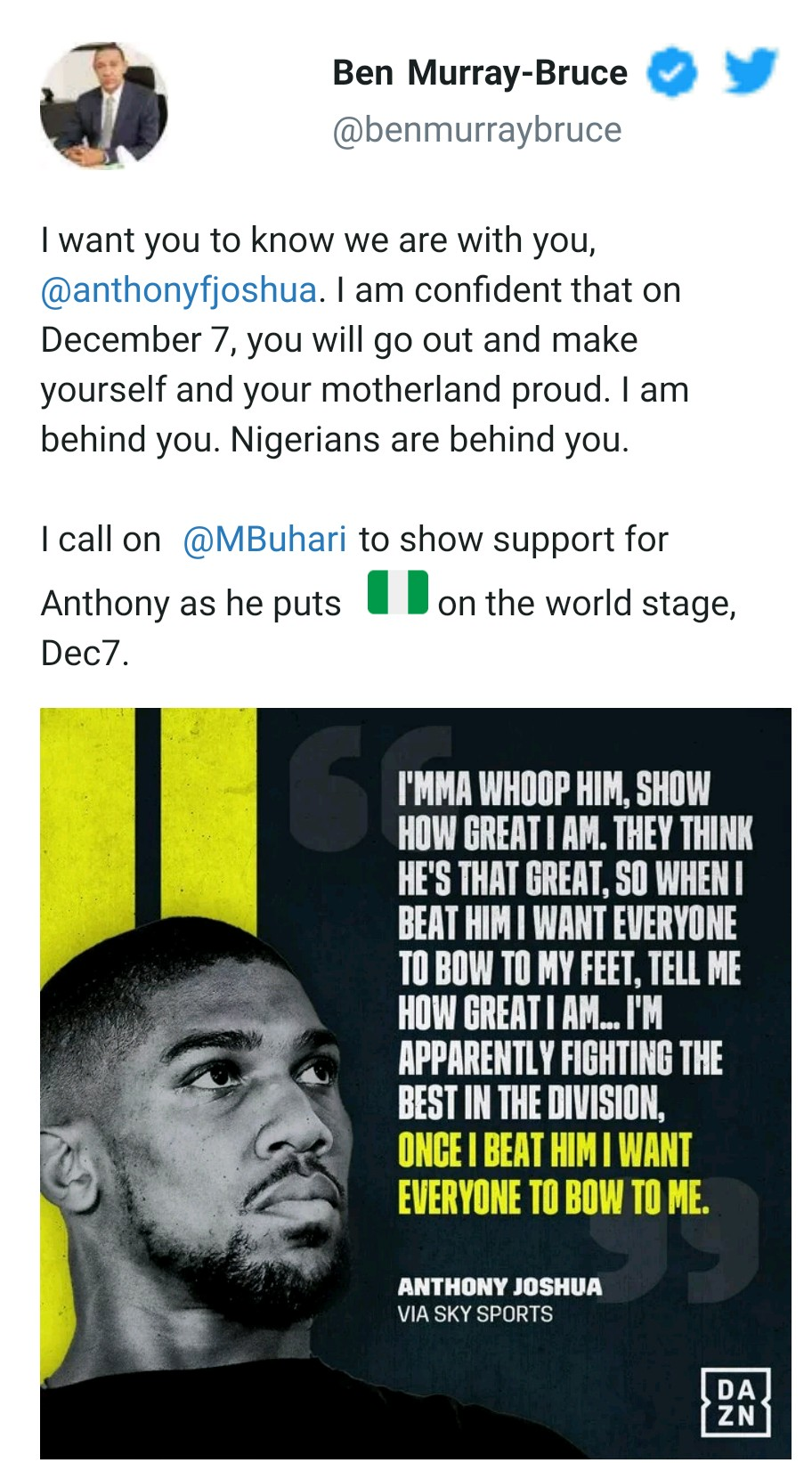 Senator Ben Bruce calls on President Buhari to support Anthony Joshua ahead of his rematch with Ruiz