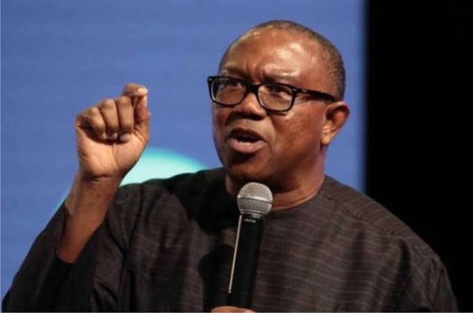 It is madness for people to be going round with 15 or 20 vehicles causing confusion all over the place – Peter Obi