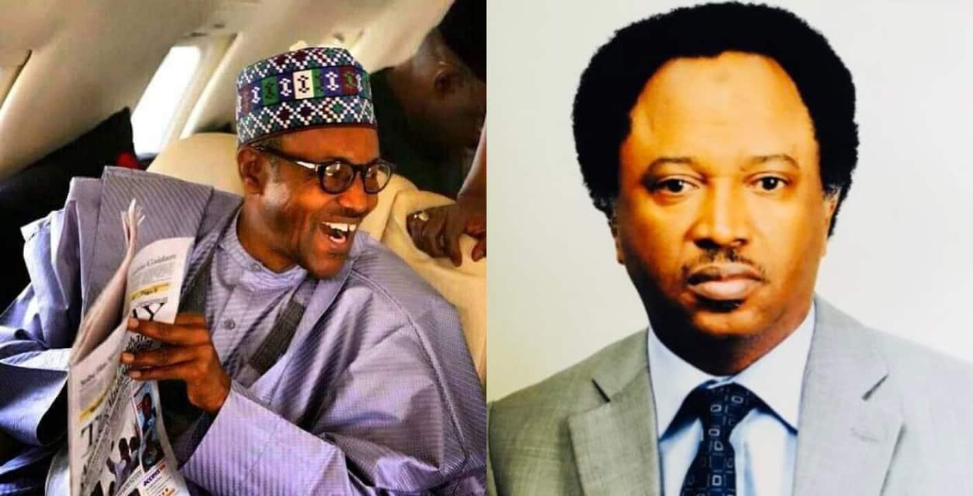 Senator Shehu Sani says Buhari canceled yesterday's broadcast because Nigerians planned to stone him