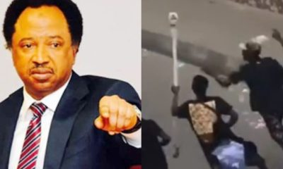 """""""Respect the throne and return staff of the Oba of Lagos"""" - Shehu Sani pleads"""