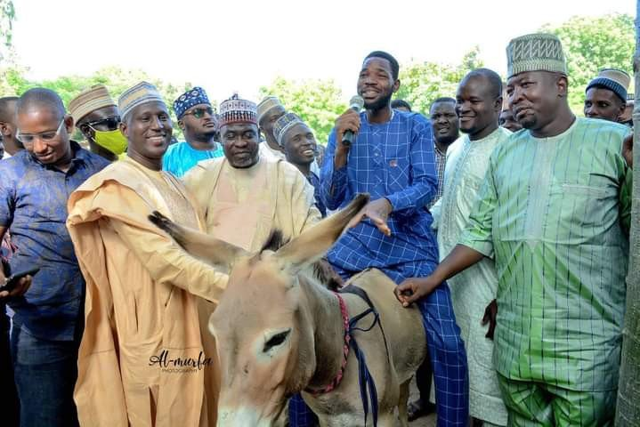 Donkeys as youth empowerment in Kano