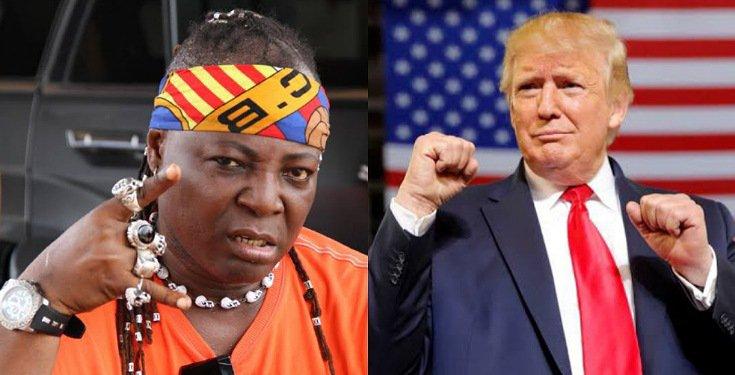 Nigerians responsible for Trump defeat