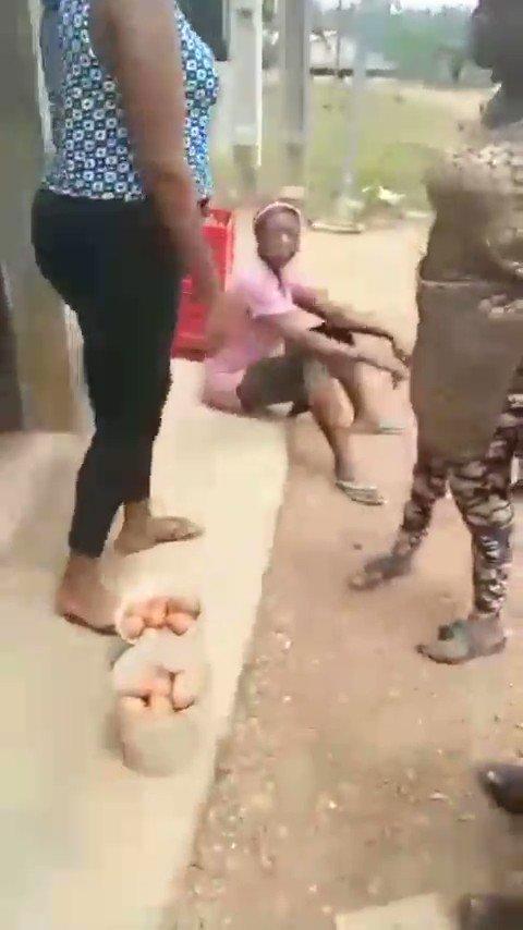 Farmworkers fresh eggs bodies