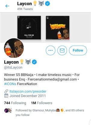 Icons mock Erica, as Laycon hits 1 million followers on Twitter