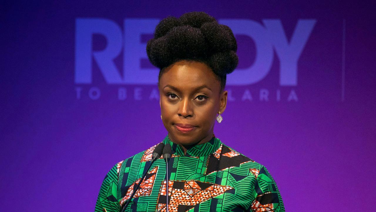 Chimamanda Adichie Nigeria frustrates