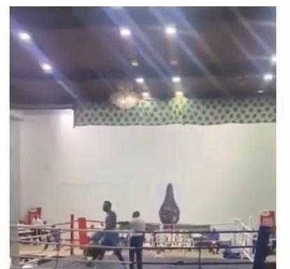 Boxer 15 seconds Adegbola