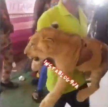 Man attends father's burial ceremony with a lion in Anambra State (Video)