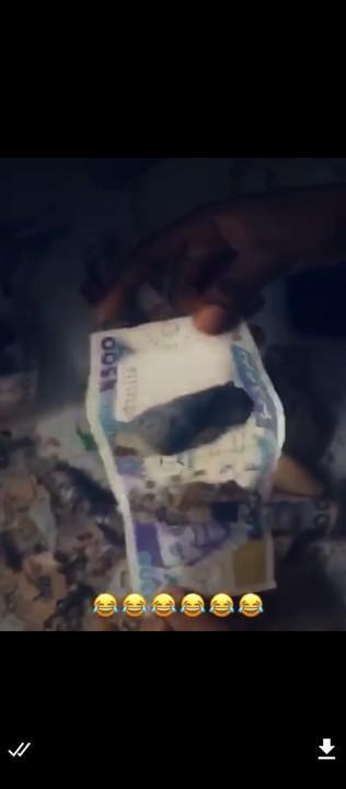 Rats piggy bank1